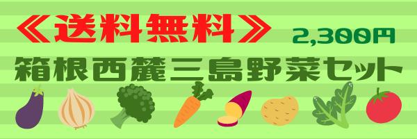 野菜セット2300