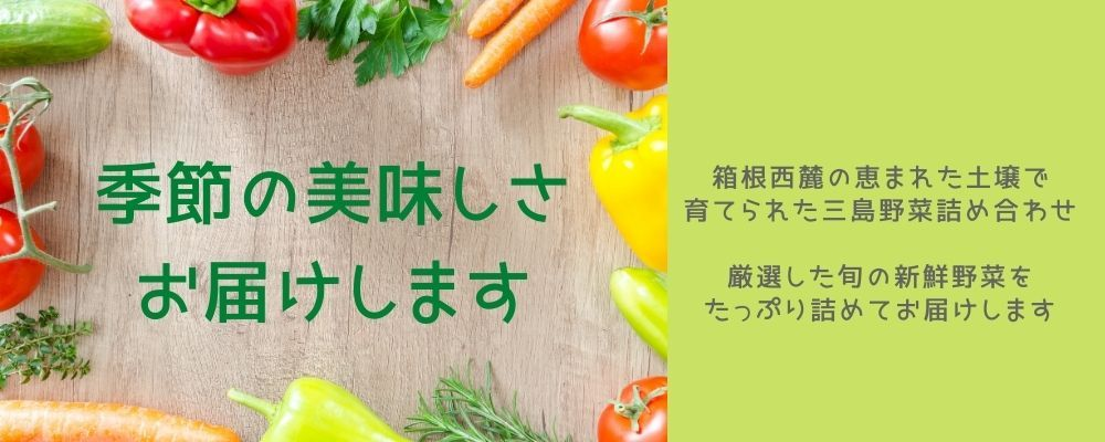 野菜セット3300