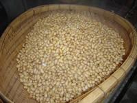 大豆煮上がり