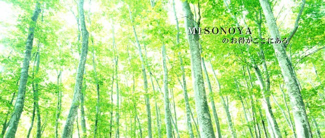 MISONOYAセール