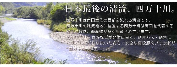 日本最後の清流、四万十川