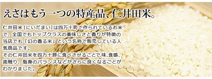 仁井田米を餌にしています。