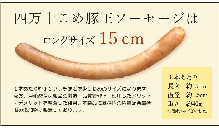 四万十こめ豚王ソーセージはロングサイズ15cm