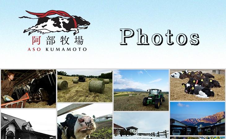 阿部牧場Photos01
