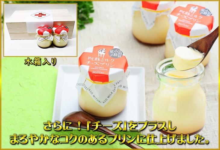プラスチーズ1