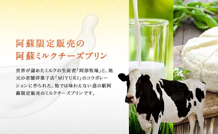 阿蘇限定販売の阿蘇ミルクチーズプリン