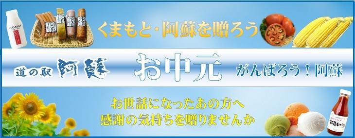 お中元・熊本・阿蘇復興応援セット