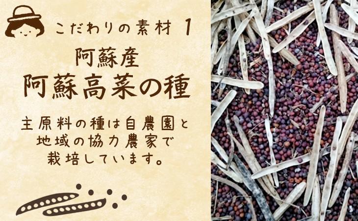 こだわりの素材1 阿蘇高菜の種