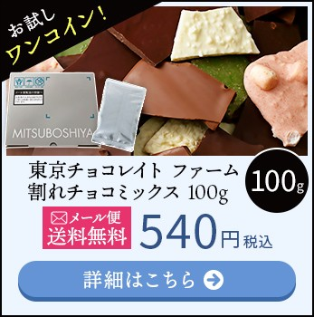 東京チョコレイト ファーム 割れチョコミックス 100g メール便送料無料 540円 税込