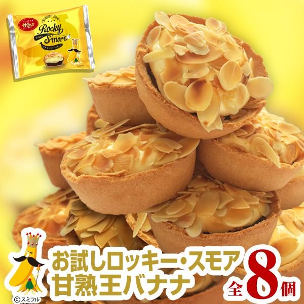 どどーんとメガ盛り ロッキー・スモア 完熟王バナナ 8個