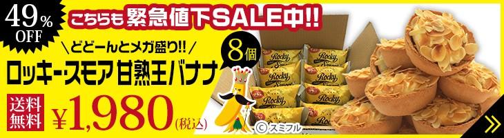 メガ盛り ロッキー・スモア 完熟王バナナ 8個 ¥1,980(税込) 送料無料