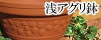 浅アグリ鉢 植木鉢/おしゃれ/可愛い/陶器/イチゴ柄/人気