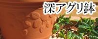 深アグリ鉢 植木鉢/おしゃれ/可愛い/陶器/大型/イチゴ柄/人気/白/ピンク/グリーン/ブルー