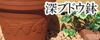 深ブドウ鉢 植木鉢/おしゃれ/可愛い/陶器/大型/ブドウ柄/人気/白