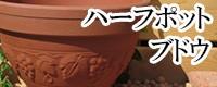 ハーフポット ブドウ鉢 植木鉢/おしゃれ/可愛い/陶器/大型/ブドウ柄/人気