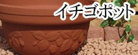 イチゴポット 植木鉢/おしゃれ/可愛い/陶器/イチゴ柄/人気