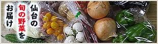 仙台の旬の野菜をお届け