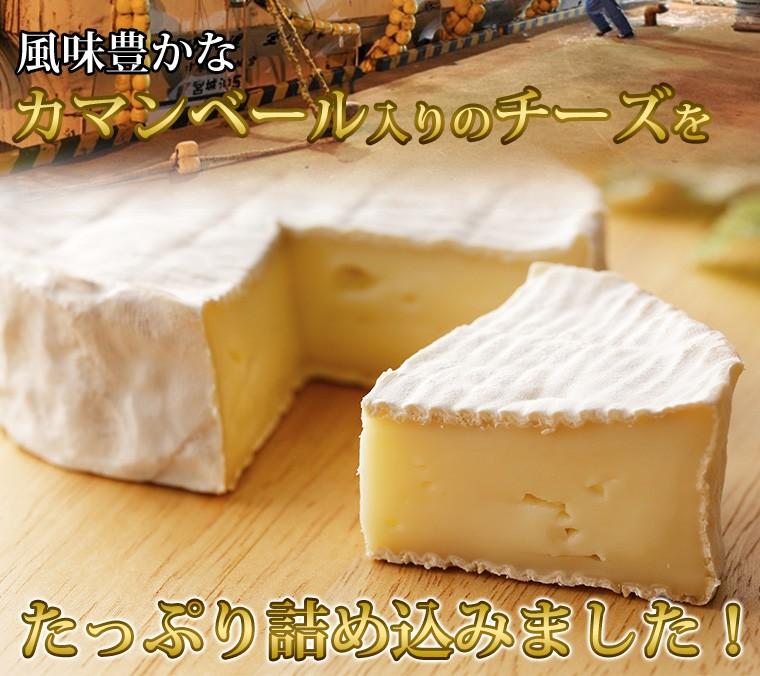 カマンベールチーズ入り チーズいか2袋セット
