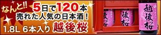 【越後桜】5日で120本売れた人気の日本酒!