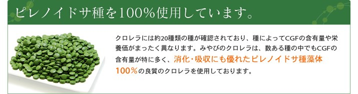 ピレノイドサ種を100%使用しています。
