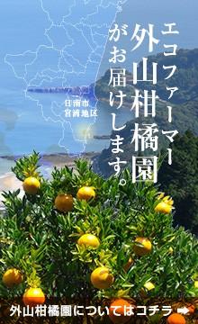 エコファーマー・外山柑橘園