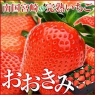 高級イチゴおおきみ