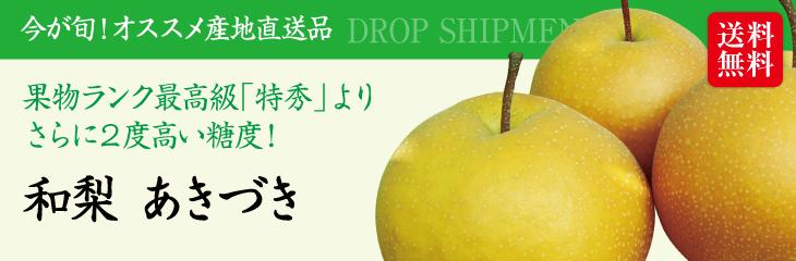 【予約販売】【9月上旬~9月下旬発送】【送料無料】新潟産「和梨 あきづき(3kg)」