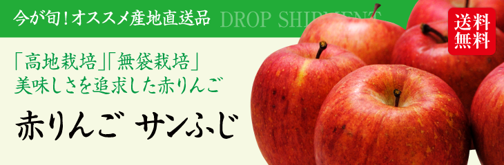 「予約販売:12月上旬発送」長野県産『サンふじ りんご(3kg)』