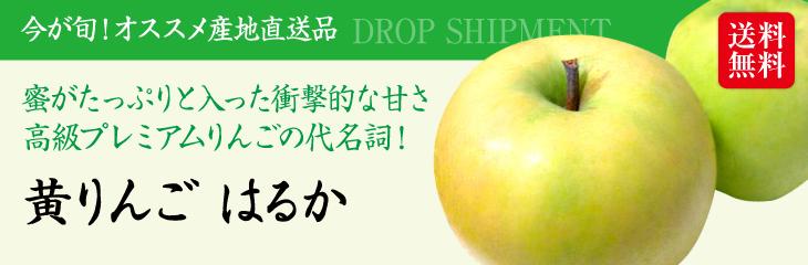 「予約販売:11月下旬発送」秋田県産プレミアムりんご『はるか(3kg)』