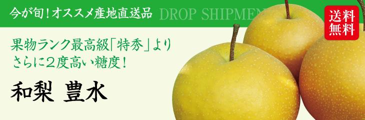 【予約販売】【9月上旬~9月下旬発送】【送料無料】新潟産「和梨 豊水(3kg)」