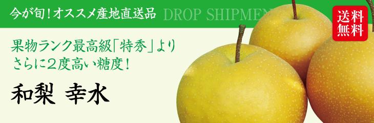 「予約販売:8月中旬〜8月下旬発送」新潟産『和梨 幸水(5kg)』