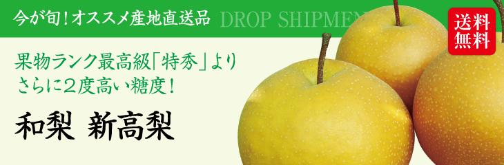 【予約販売】【10月中旬~発送】【送料無料】新潟産「和梨 新高梨(3kg)」
