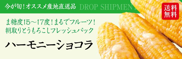 まるでフルーツのような甘さ 秋田県鹿角市産朝採りとうもろこし『ハーモニーショコラ(10本入)』