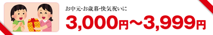 3,000円〜3,999円