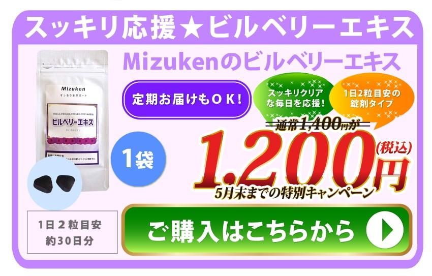 ビルベリー1200円