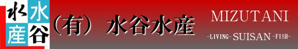 水谷水産 Yahoo!店 ロゴ