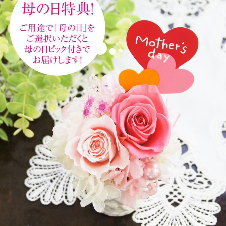 母の日のご用途の方に母の日ピックプレゼント