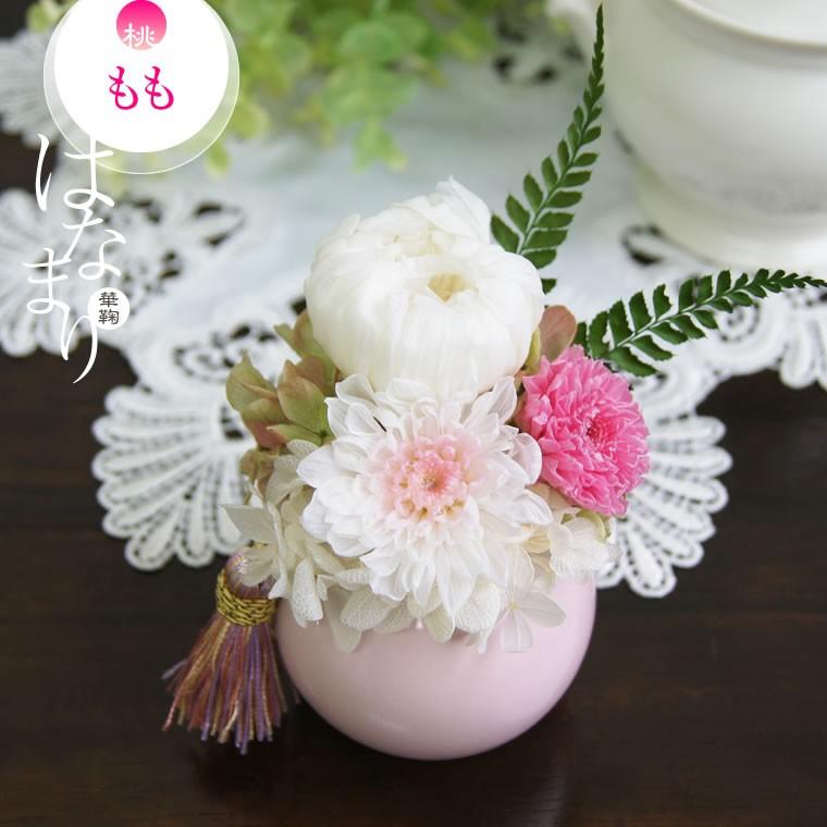 白菊 ピンクの小菊 桃