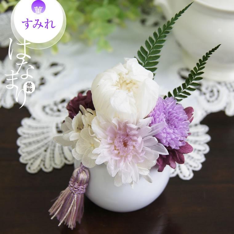白菊 パープル 薄紫の小菊 すみれ
