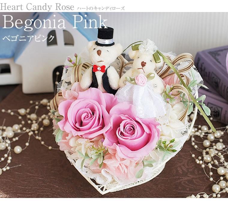 結婚のお祝いに贈る花ギフト、ベゴニアピンク