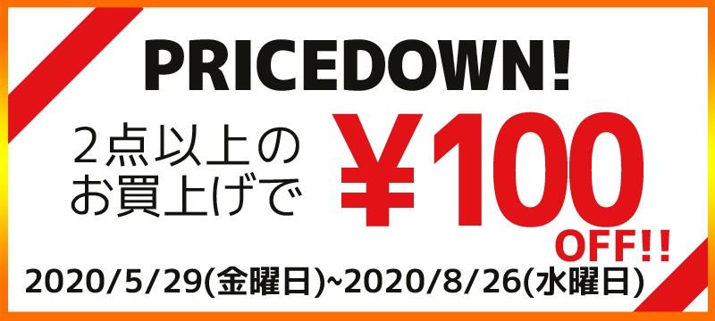 2点以上購入で100円OFF