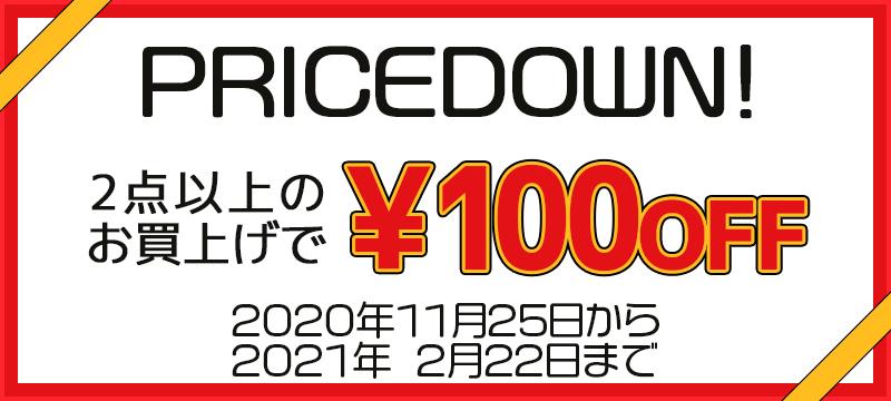 2点以上のお買い上げで100円OFF!!