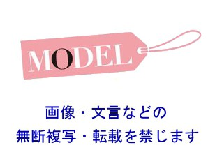 MODEL ロゴ