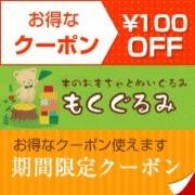 木のおもちゃのもくぐるみ 3000円以上の購入で100円OFF クーポン