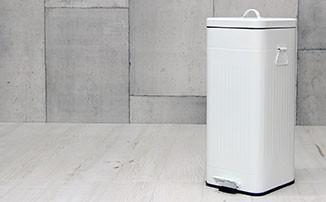 ゴミ箱 ごみ箱 Galva 30L ダストボックス