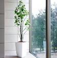 光触媒人工観葉植物 アーバンブランチツリー1.8m