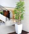 光触媒人工観葉植物(インテリアグリーン)アーバンゴールデンリーフ1.8m