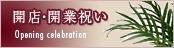 開店・開業祝いに!光触媒アートフラワー(造花)&光触媒観葉植物
