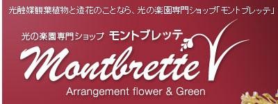 光触媒観葉植物・人工観葉植物・光触媒フラワーや造花のことなら、光の楽園専門ショップ「モントブレッテ」へ