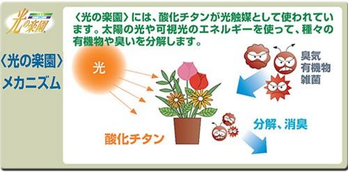 光触媒観葉植物&光触媒造花(光の楽園)の光触媒について